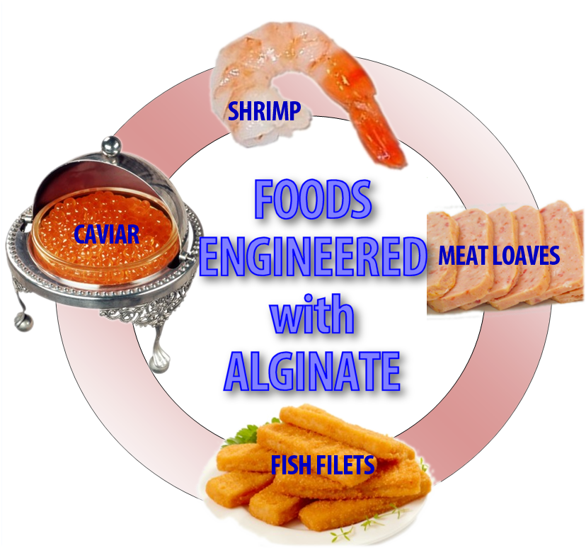 Foods Engineered with Alginate